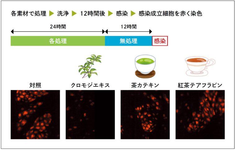 他の食品素材との持続性比較