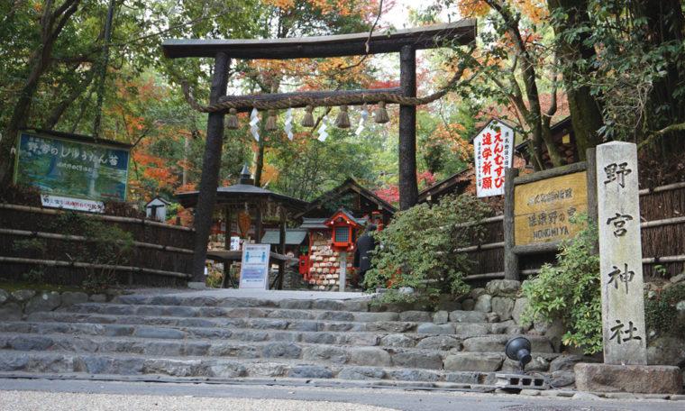 野上神社  黒木鳥居とクロモジ垣